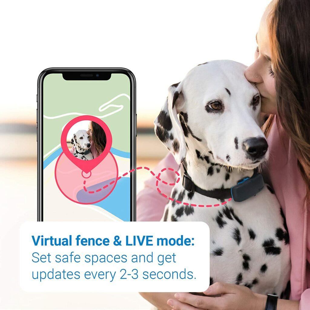 GPS-трекер для собак и кошек: Tractive