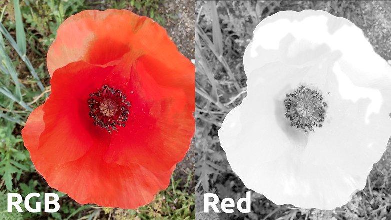 motorola edge качество изображения красного цвета