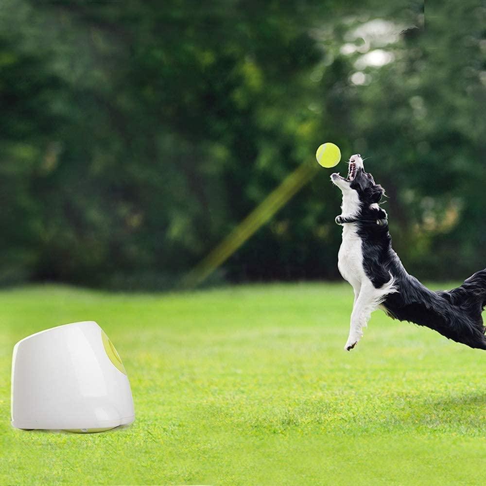 Пусковые установки для дрессировки собак